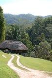 Casa de campo cubierta con paja de la selva en Maya Mountains Belize Imagenes de archivo