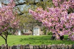 Casa de campo da mola Foto de Stock Royalty Free