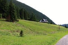Casa de campo da montanha a mais forrest Imagem de Stock Royalty Free
