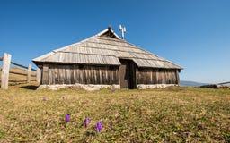 Casa de campo de madeira tradicional em Velika Planina durante o tempo de mola com açafrões Imagens de Stock