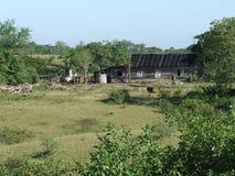 Casa de campo de madera con la azotea de goma Foto de archivo