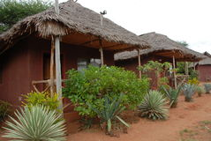 Casa de campo del safari Imagen de archivo