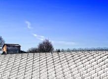 Casa de campo do camponês do país Fotos de Stock