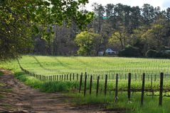 Casa de campo do país Foto de Stock Royalty Free