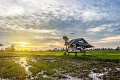 Casa de campo do por do sol no campo de milho fotos de stock royalty free