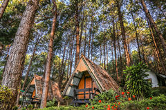 Casa de campo do turista em Pang Ung, Mae Hong Son, Tailândia Fotos de Stock Royalty Free