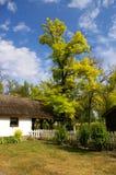 Casa de campo do verão imagem de stock