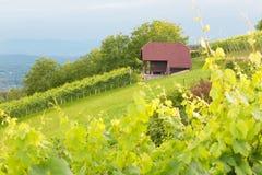 Casa de campo do vinhedo Imagens de Stock