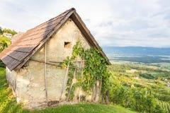 Casa de campo do vinhedo Imagem de Stock