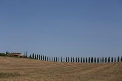 Casa de campo do vinhedo em Toscânia Itália Imagens de Stock