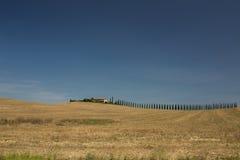 Casa de campo do vinhedo em Toscânia Itália Fotografia de Stock Royalty Free