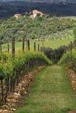 Casa de campo e vinhedo de Tuscan Fotografia de Stock