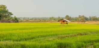 Casa de campo em Tailândia rural imagens de stock royalty free