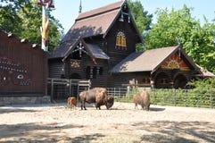 Casa de campo en el pueblo y un hogar Foto de archivo libre de regalías