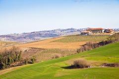 Casa de campo italiana com vinhedo: estação de mola fotos de stock royalty free