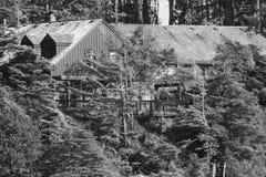 Casa de campo Logcabin de Middlebeach imagen de archivo libre de regalías