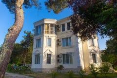 Casa de campo luxuosa com pinheiro Imagem de Stock