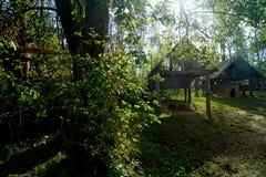 Casa de campo de madeira dos celts antigos do Polônia de Biskupin fotos de stock