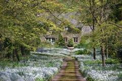 Casa de campo na extremidade de uma pista alinhada flor Fotografia de Stock Royalty Free