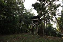 Casa de campo na floresta Imagem de Stock Royalty Free