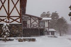 Casa de campo no tempo do inverno ele ` s que neva acima das árvores e dos pinheiros imagens de stock