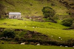 Casa de campo de pedra no país r ireland Imagens de Stock Royalty Free