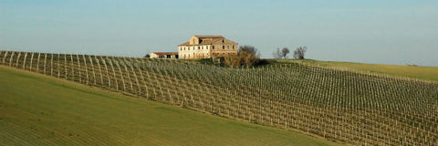 Casa de campo velha - Italy Foto de Stock