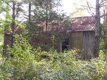 Casa de cem e de pessoas de cinquenta anos cercada por pinheiros Imagens de Stock