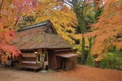 Casa de chá no outono Nana, japão fotografia de stock royalty free