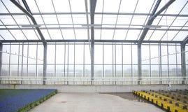 Casa de cristal con las flores Imagen de archivo libre de regalías
