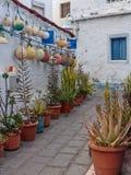 Casa de Fishermans en las islas Canarias de Agaete imágenes de archivo libres de regalías