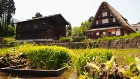 Casa de Gassho con el campo del arroz Fotografía de archivo libre de regalías