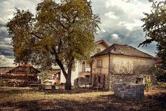 Casa de la aldea con el árbol imagen de archivo libre de regalías