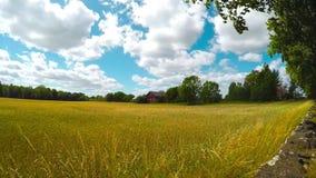 Casa de la granja en campo almacen de video