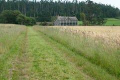 Casa de la granja en un campo de trigo Fotografía de archivo libre de regalías
