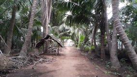 Casa de la granja de Vanathirajapuram en la India Foto de archivo
