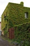 Casa de la hoja Fotos de archivo