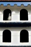Casa de la paloma en Varadero imágenes de archivo libres de regalías