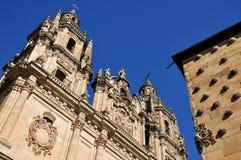 Casa de las Conchas y universidad de Salamanca Foto de archivo libre de regalías