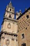Casa de las Conchas y universidad de Salamanca Fotografía de archivo libre de regalías