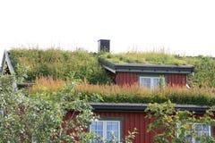 Casa de Lofoten con la hierba en la azotea Imagenes de archivo