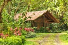 Casa de log de madeira em uma floresta tropical tropical Fotos de Stock Royalty Free
