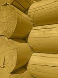 Casa de log do fragmento Imagens de Stock
