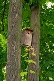 Casa de los pájaros fotos de archivo libres de regalías