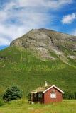 Casa de madeira com o verde-telhado sob a montanha. Fotos de Stock
