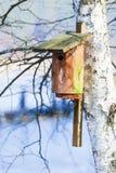 Casa de madeira do pássaro da caixa de assentamento na árvore exterior. inverno. Imagens de Stock Royalty Free
