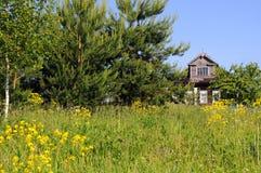 Casa de madeira no campo em Rússia central Imagens de Stock