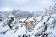 Casa de madeira no meio das ?rvores cobertas com a neve, a casa da madeira/alojamento entre a floresta do pinho e os ramos cobert fotografia de stock