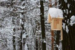 Casa de madeira para os pássaros no parque do inverno Imagens de Stock