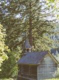 Casa de madeira pequena construída em uma floresta imagem de stock royalty free